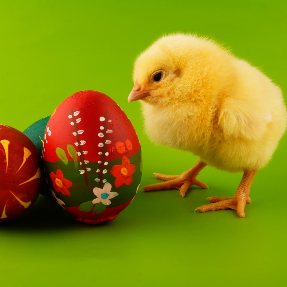 Easter Symbols and Traditions - Easter Bunny, Easter Eggs
