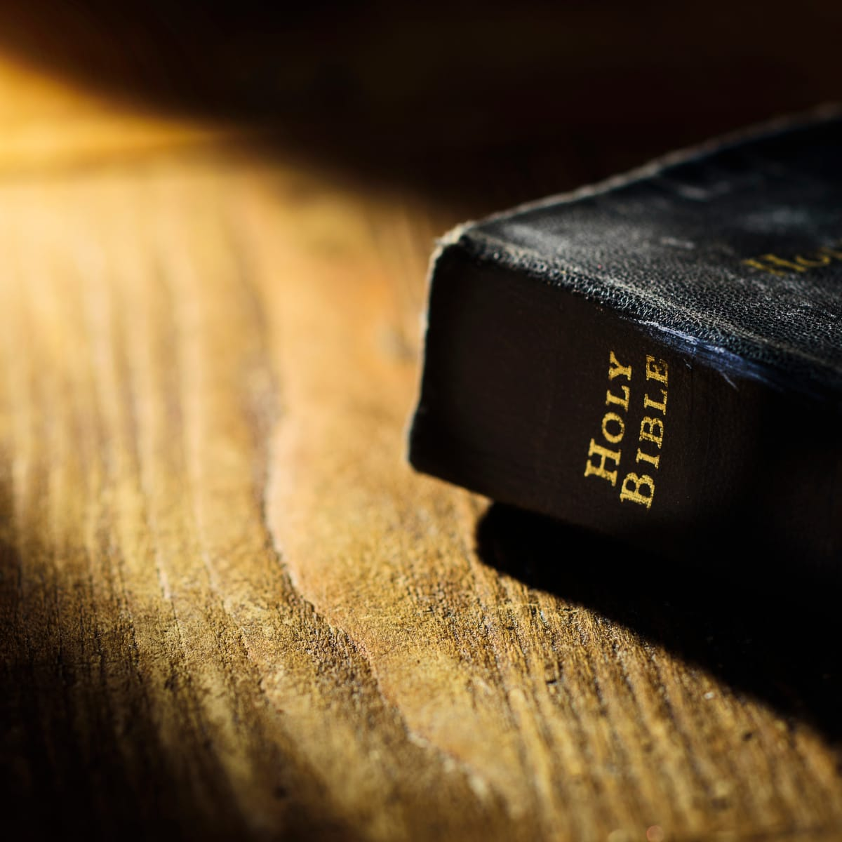 The Bible - HISTORY