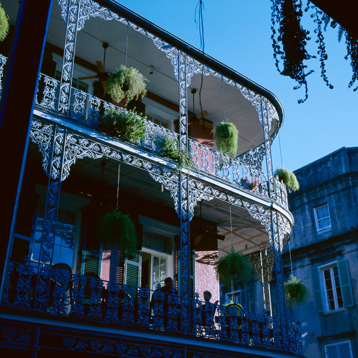 The French In New Orleans History