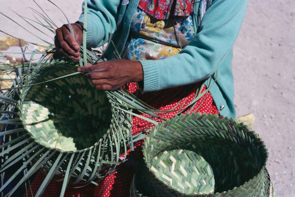 Tarahumaran Woman Weaving A Basket