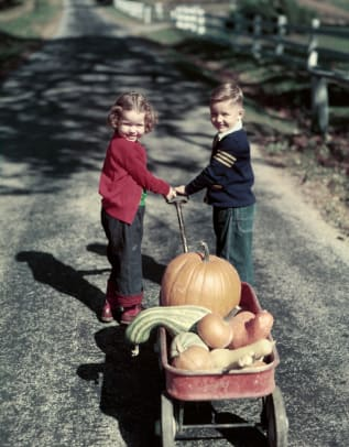 1950s Kids In Blue Jeans Pulling Red Wagon Full Of Pumpkins 2