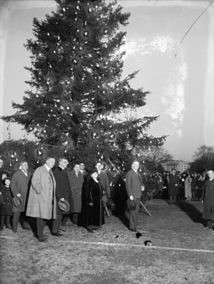 Coolidge-Christmas-Tree-Lighting-LoC