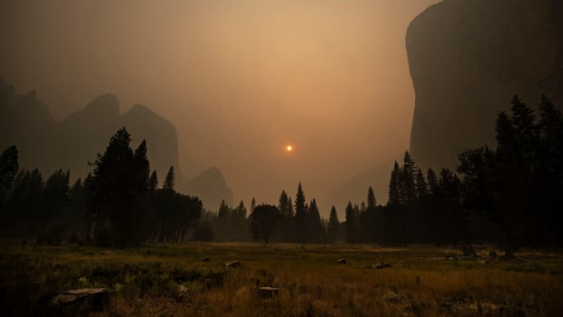 Native Americans Used Fire to Protect and Cultivate Land