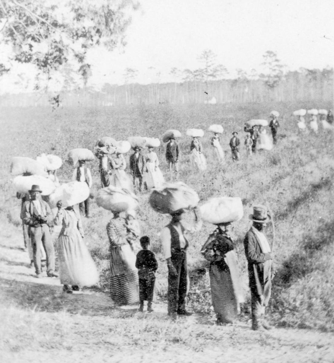 Slaves returning from the cotton fields in South Carolina, circa 1860. (Credit: Fotosearch/Getty Images)