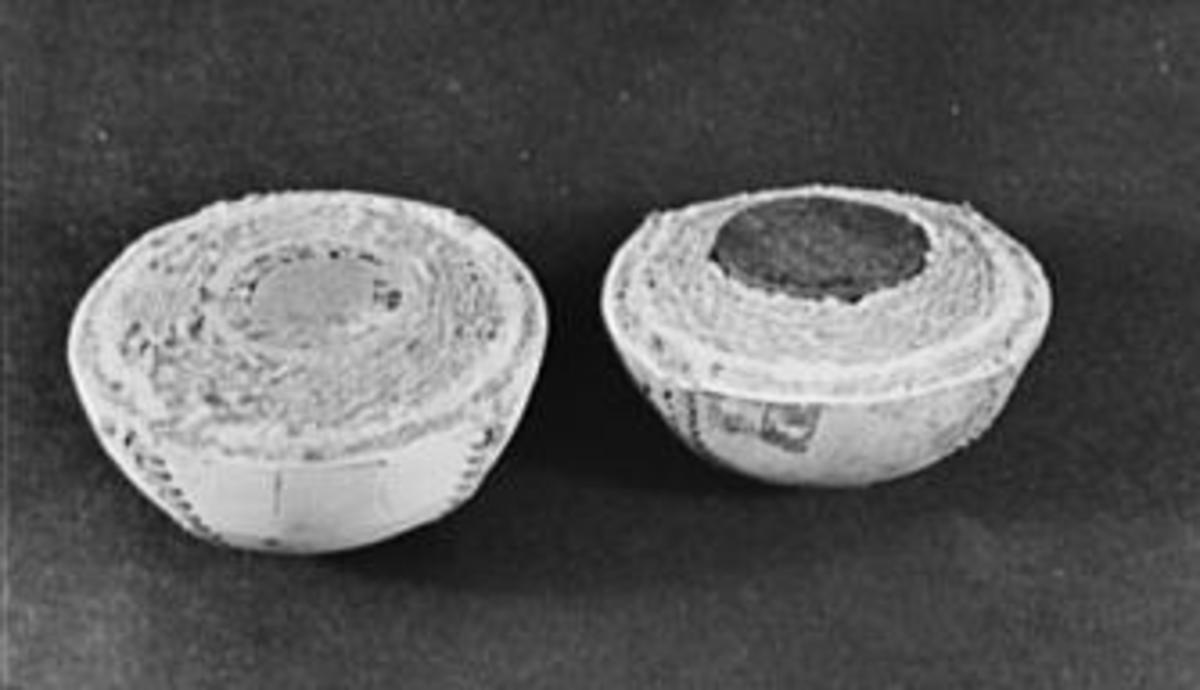 Halves of two baseballs. On the left, a traditional cork-centered ball, and on the right, a rubber-centered ball used during World War II. (Credit: Roger Smith)