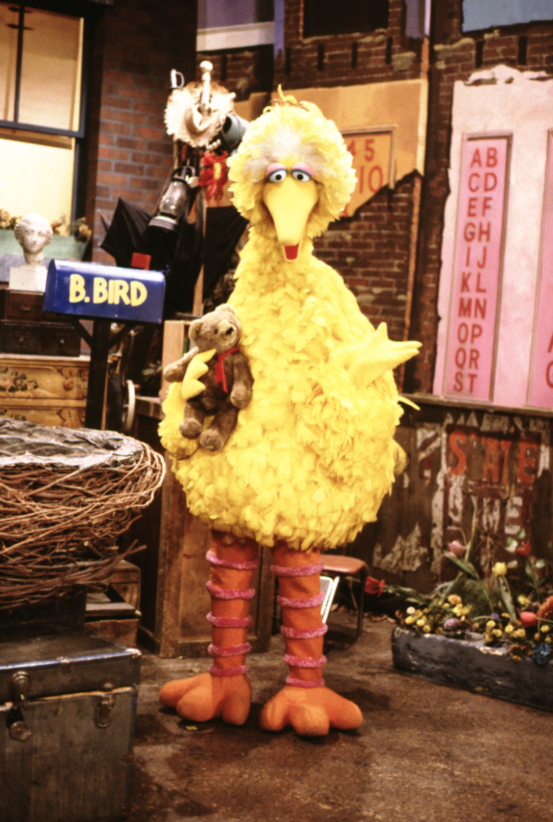 Big Bird Nearly Rode On The Disastrous Challenger Mission