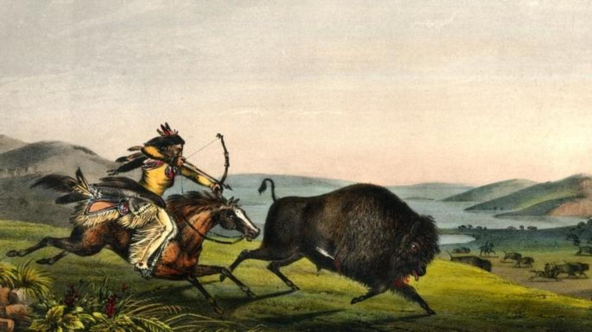 'Hunting the Buffalo' by Peter Rindisbacher, 1836. (Credit: Universal History Archive/UIG via Getty Images)