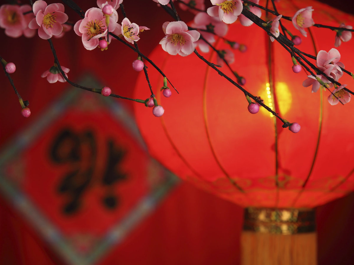 Opinion you chinese new year history agree