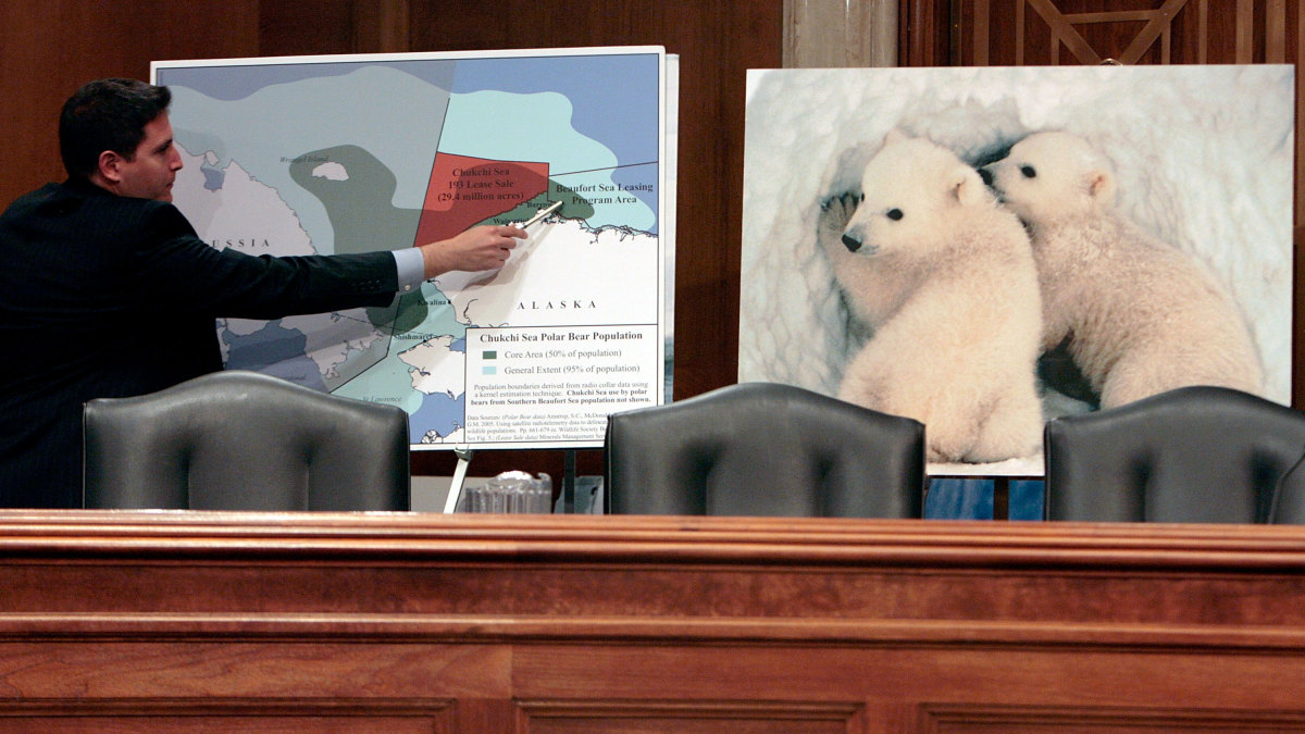 A Senate Environment and Public Works Committee staffer points to a map of Alaska during a 2008 hearing about the possible listing of the polar bear under the Endangered Species Act due to global warming. (Credit: Chip Somodevilla/Getty Images)