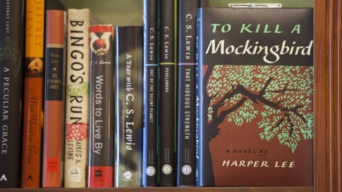 to kill a mockingbird, banned books
