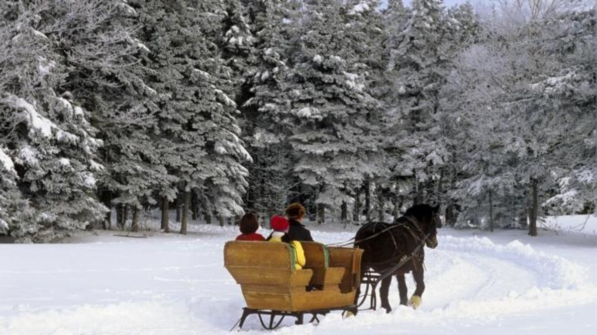 Winter sleigh ride, Prince Edward Island, Canada. (Credit: Barrett & MacKay)
