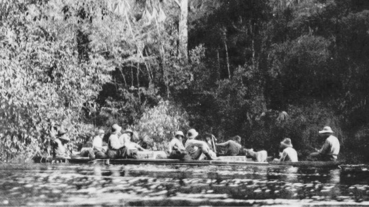 The Amazonian Expedition That Nearly Killed Theodore Roosevelt - HISTORY