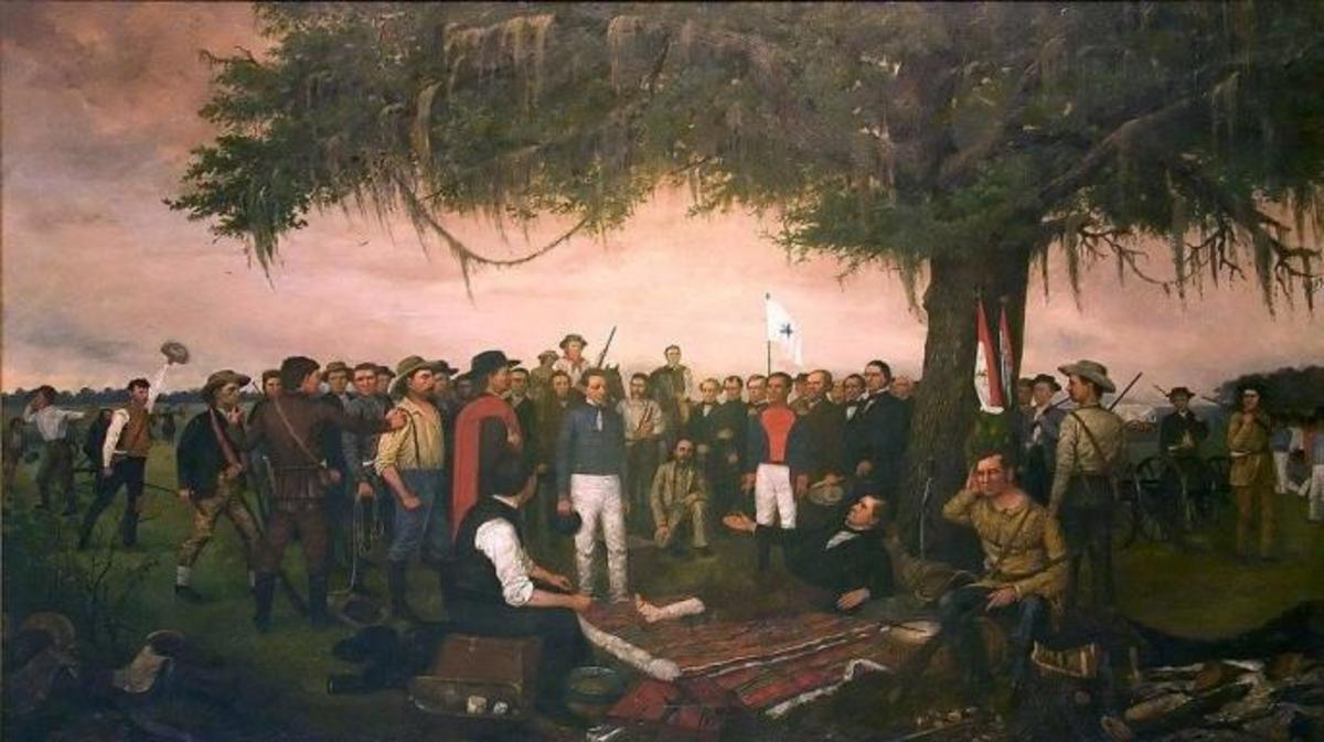 7 Things You May Not Know About Sam Houston - HISTORY
