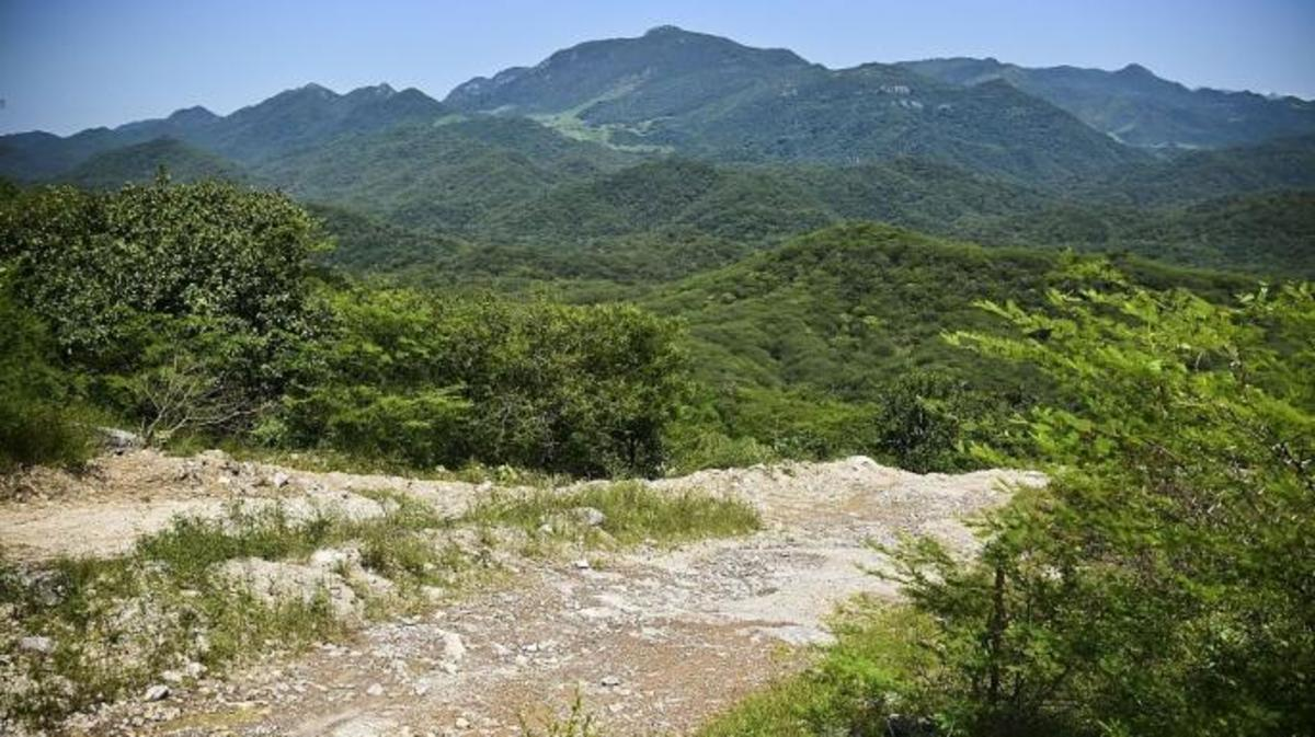 The hills of the Sierra Madre. (