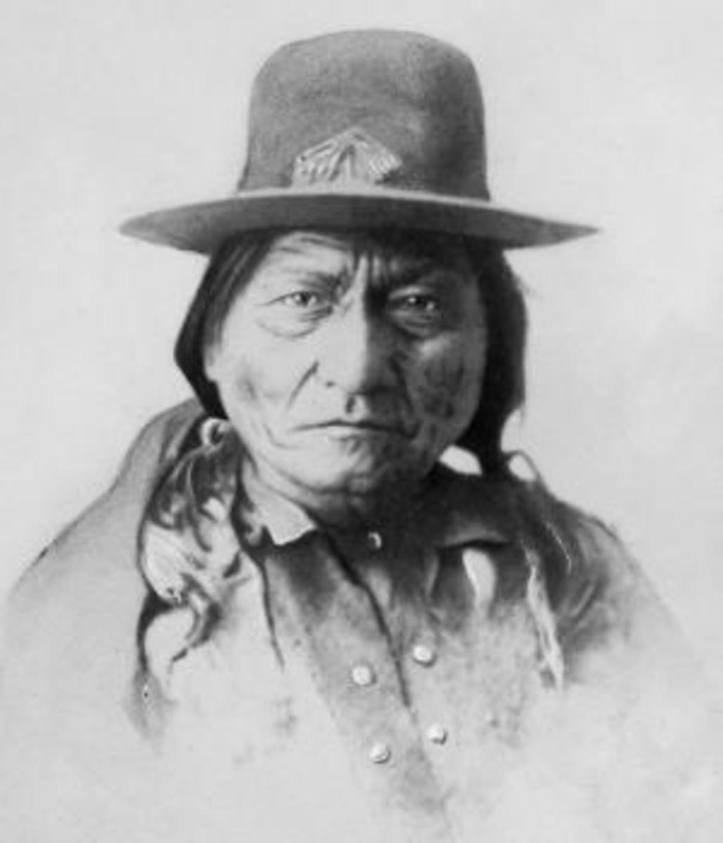 why did sitting bull leave canada