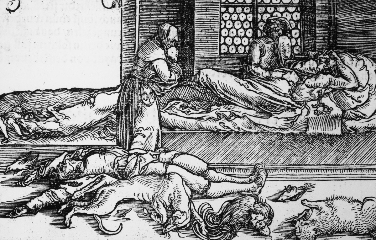 Rats Didn't Spread the Black Death—It Was Humans - HISTORY