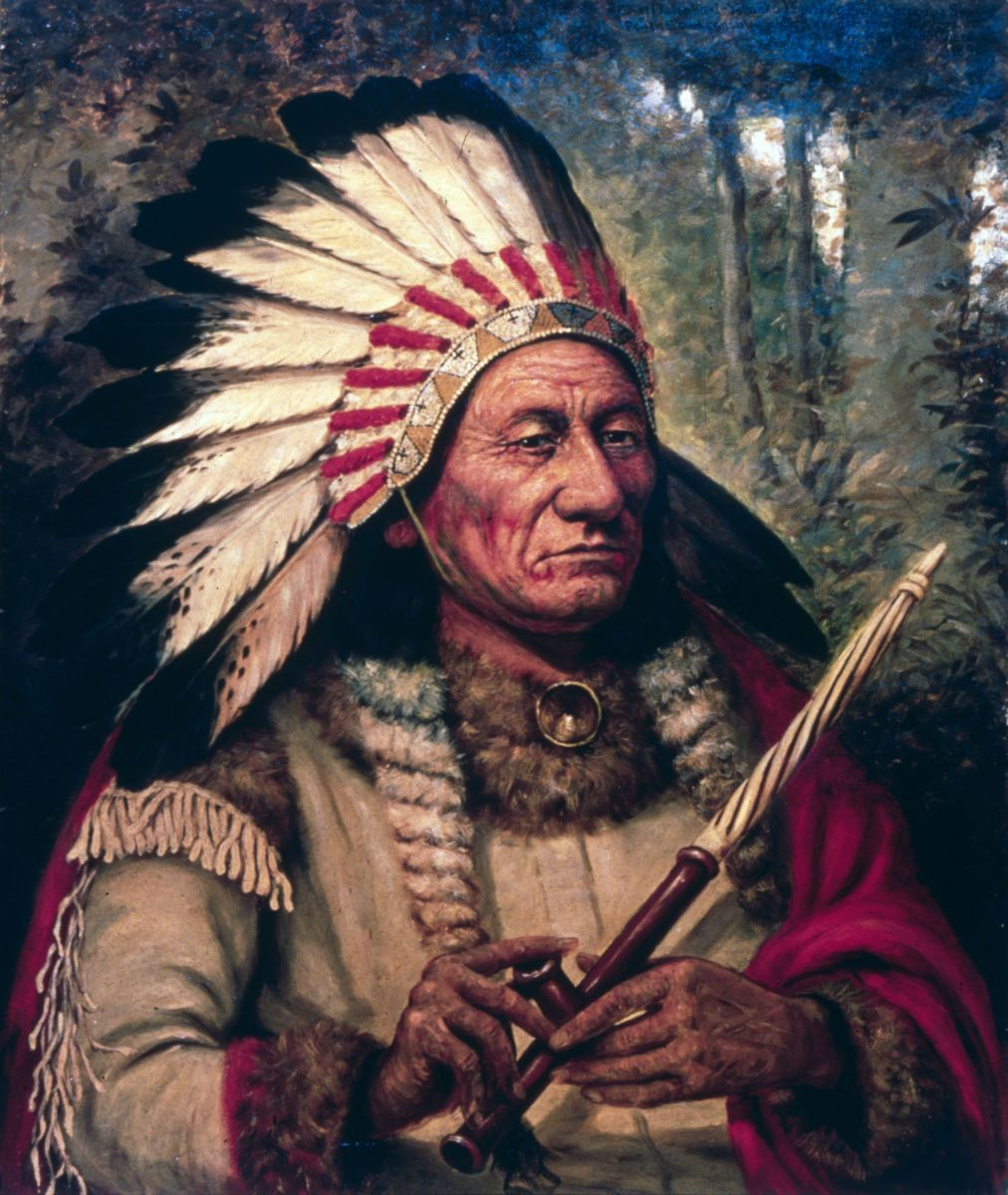 sitting bull history. Black Bedroom Furniture Sets. Home Design Ideas
