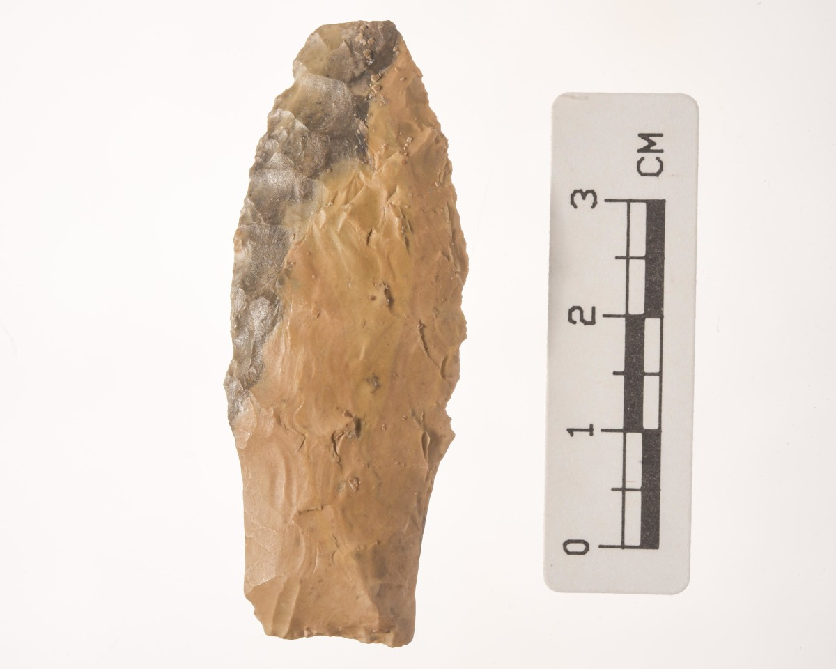 A Stemmed Lanceolate projectile point that dates about 15,000 years old.