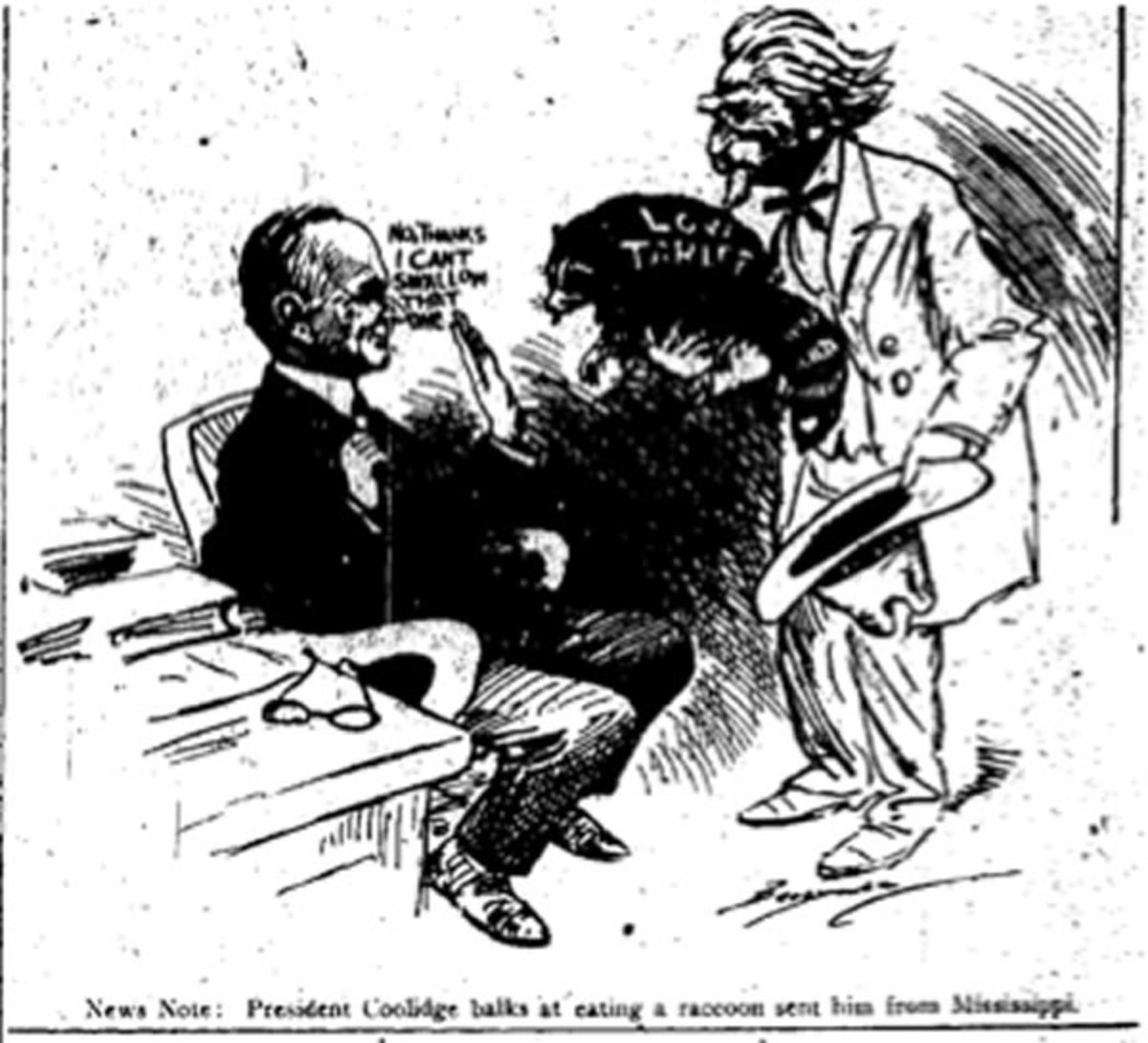 Political Cartoon of Coolidge and the Raccoon