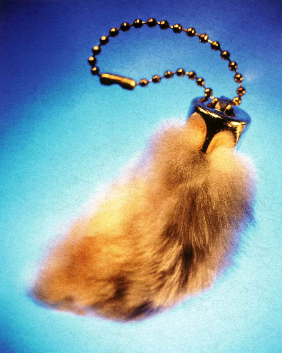 Rabbits' Foot is a symbol of good luck