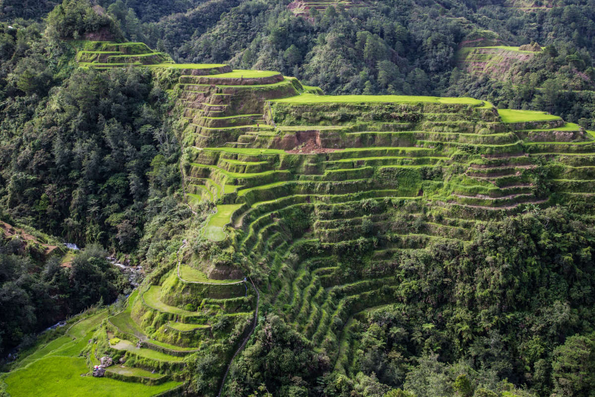 Wonders of the World: Banaue Rice Terraces