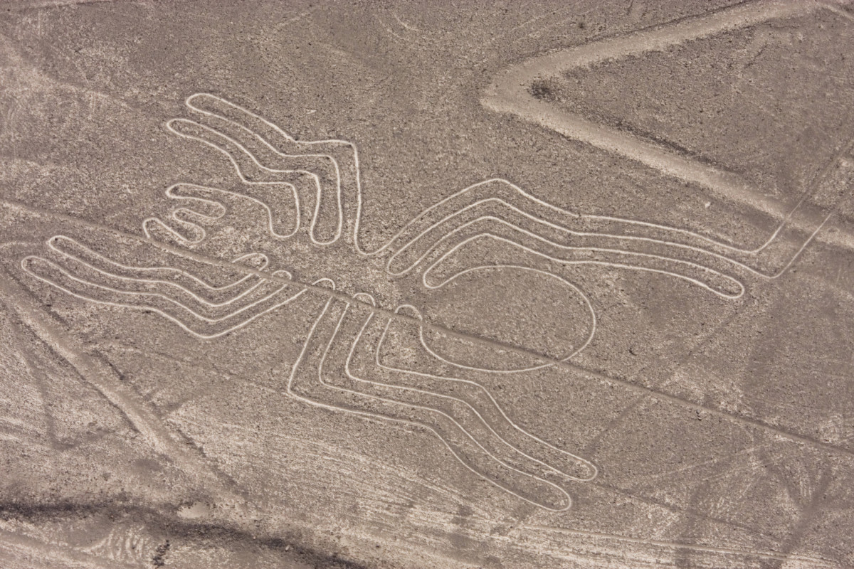 8 Astonishing Ancient Sites in the Americas: The Nazca Lines