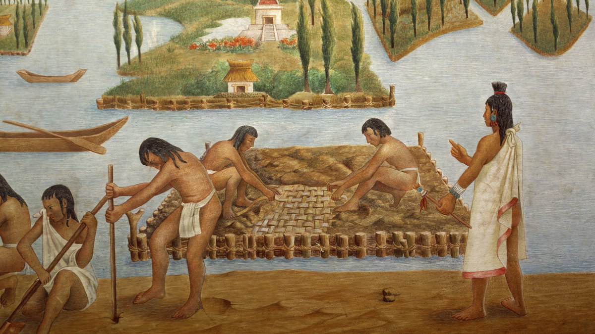 Native American Inventions: Chinampas