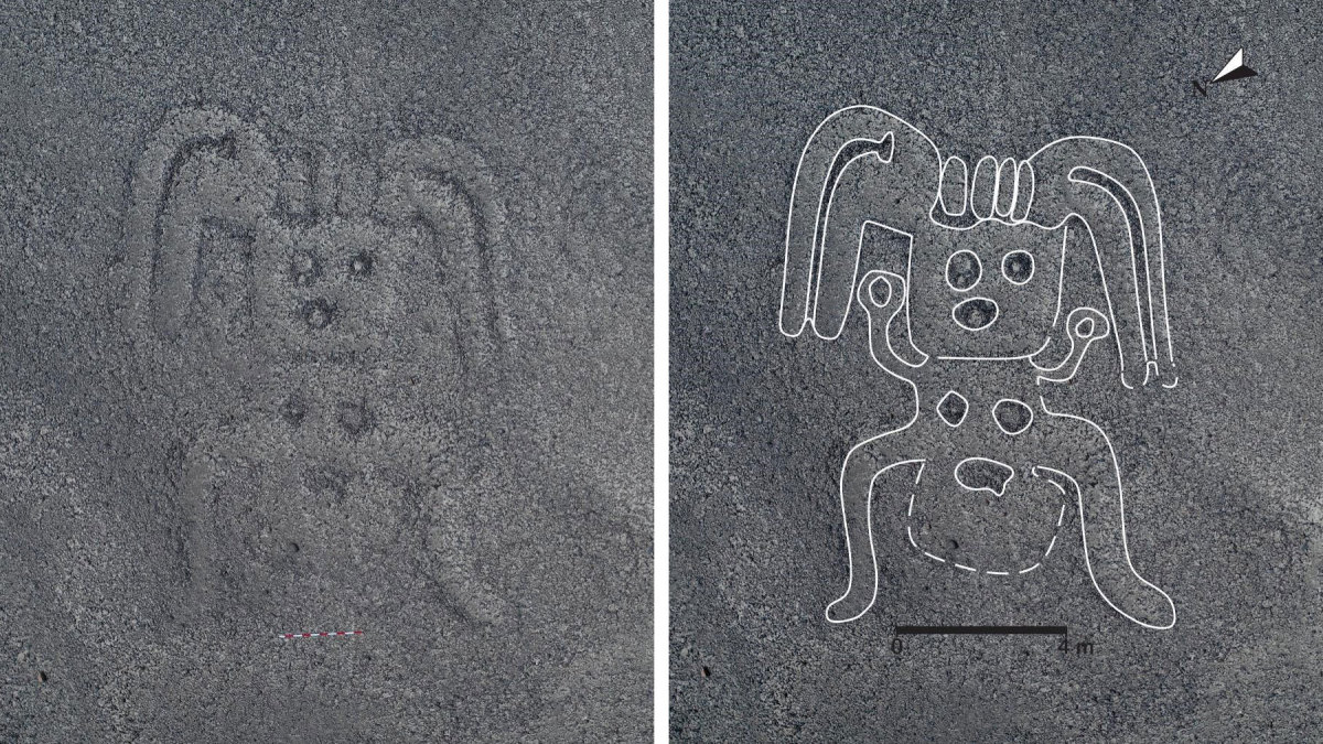 Nazca Line Discoveries in Peru Suggest the Mysterious Geoglyphs Are Pervasive