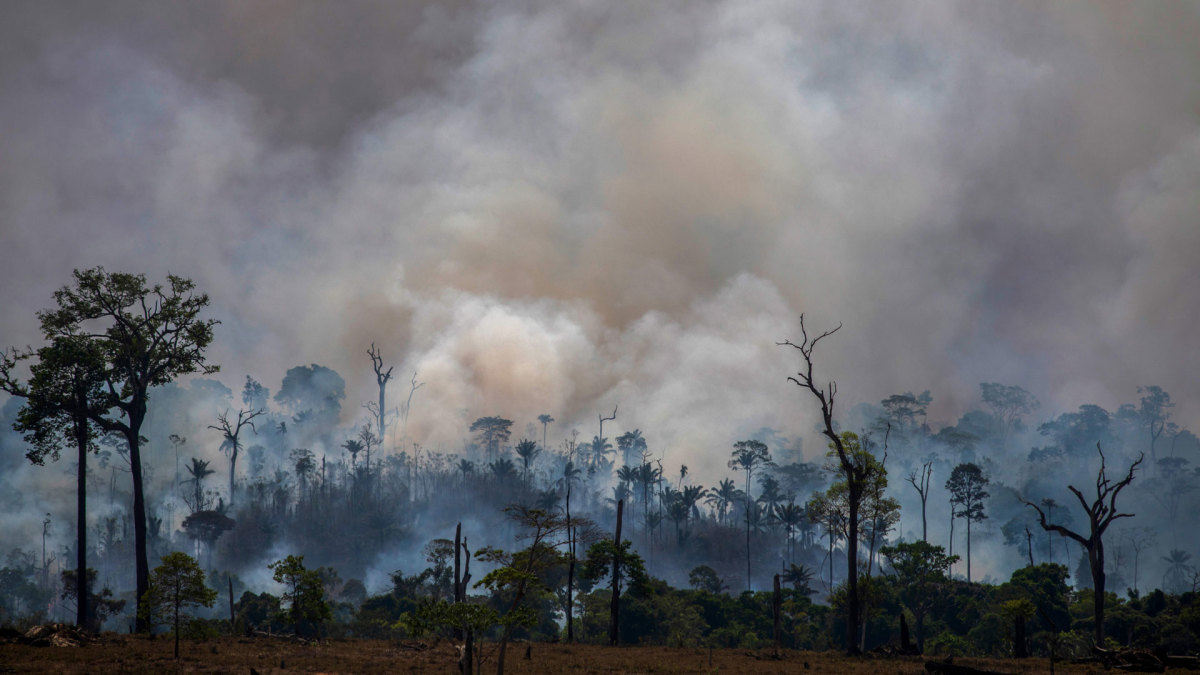 Smokes rises from forest fires in Altamira, Para state, Brazil, in the Amazon basin on August 27, 2019.