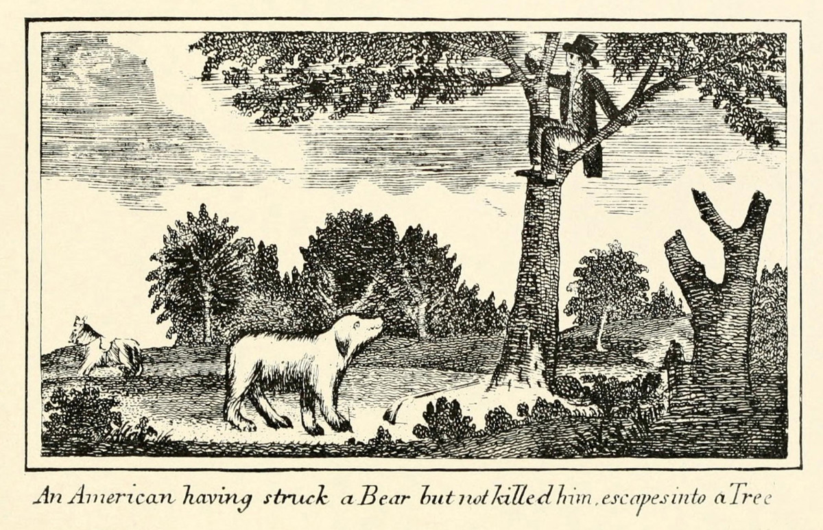 An illustration from Lewis and Clark's journal of the Corps of Discovery, 'American having struck a Bear but not killed him escapes into a tree.'