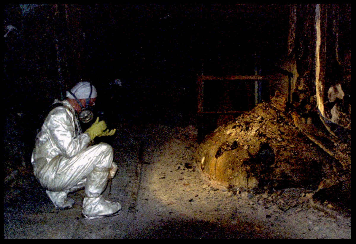 "The Elephants Foot of the Chernobyl disaster in the immediate aftermath of the meltdown. The ""Elephant's Foot"" is a solid mass made of melted nuclear fuel mixed with lots and lots of concrete, sand, and core sealing material that the fuel had melted through."