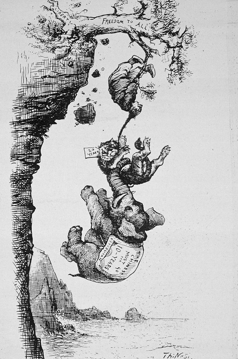 A cartoon about the Chinese Exclusion Act depicting a Chinese man hanging from a branch labelled 'Freedom to All' with a tiger, representing Irish workers, and an elephant, representing Republicans, weighing him down.