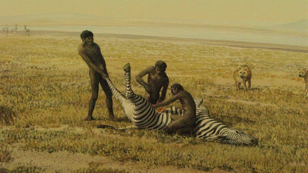 Neanderthals hunting a zebra for food.