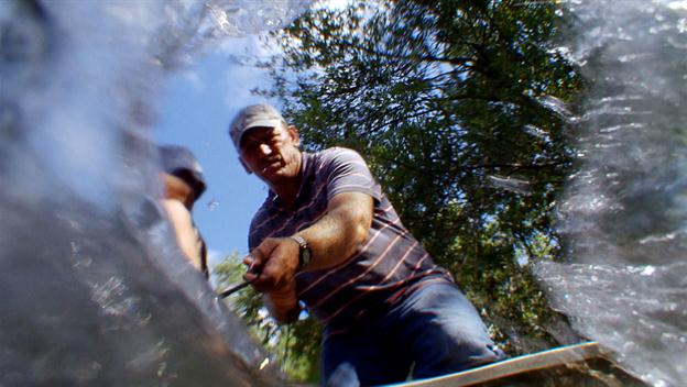 Swamp People: Beat the Clock