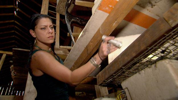 American Pickers: Danielle Goes Picking